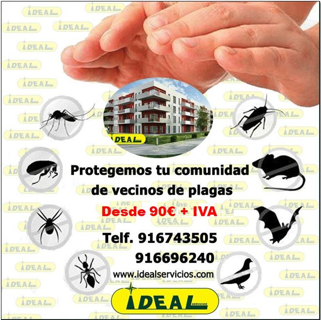 Control de plagas para comunidades en Madrid
