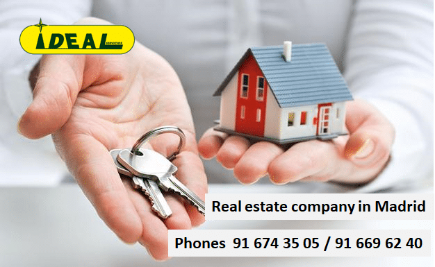 Real estate company in Madrid